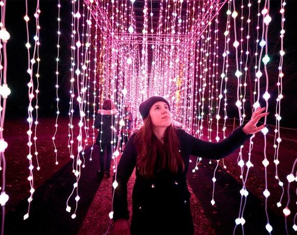 Christmas at Kew